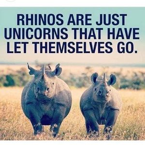 We are ALL UNICORNS 🦄 🦄 in SOME way